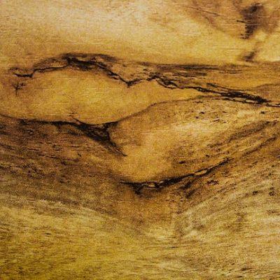 Sylvan Mazuria Oak